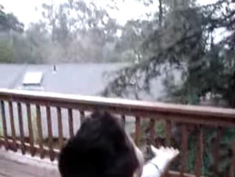 Montclair Joy Of Snow