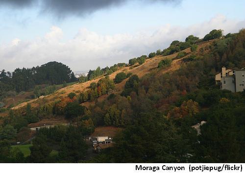 Moraga Canyon