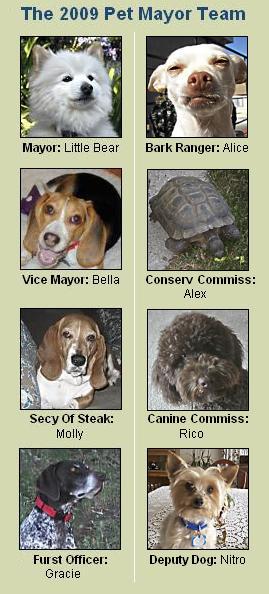 The 2009 Pet Mayor Team