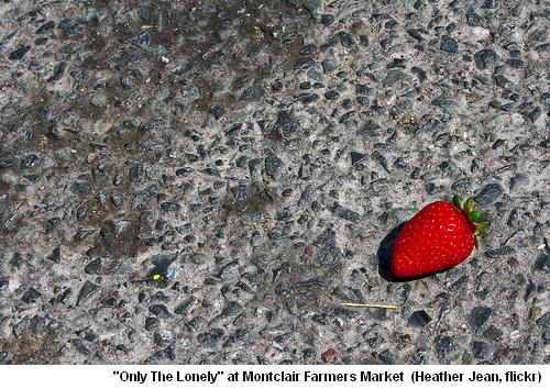 Farmers Market, Only The Lonely