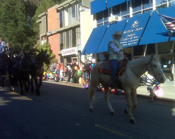 Halloween 2009 - Horses Parade